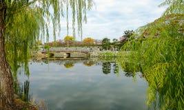 Burggraben von Himeji-Schloss im Herbst stockfotografie