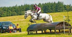 Burgie国际马试验2013年 库存图片