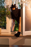 Burglar entering the house Stock Photography
