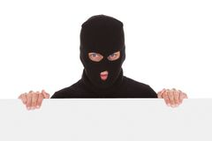 Burglar Holding Blank Placard. Burglar With Balaclava Holding Blank Placard Isolated On White Background Royalty Free Stock Image
