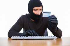 Burglar typing on keyboard and holding credit card Stock Photos