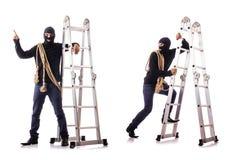 The burglar wearing balaclava isolated on white. Burglar wearing balaclava isolated on white royalty free stock images
