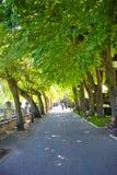 Burgos paseo espolon park in Castilla Spain Stock Image