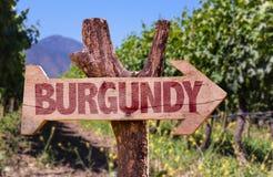 Burgunder-Holzschild mit Weinkellereihintergrund Lizenzfreie Stockfotos