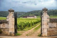 burgundy αμπελώνες της Γαλλίας στοκ φωτογραφίες με δικαίωμα ελεύθερης χρήσης