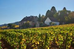 Burgundy κτήμα κρασιού κάτω από έναν ακτινοβόλο ήλιο κατά τη διάρκεια ενός ηλιόλουστου φθινοπώρου Δ στοκ φωτογραφία με δικαίωμα ελεύθερης χρήσης