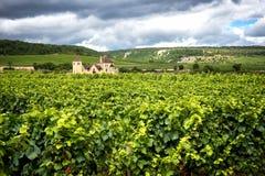 Burgundy, πολύ κάστρο πύργων περιβάλλεται από πολλά στρέμματα των αμπελώνων και είναι μεγάλοι παραγωγοί κρασιού Γαλλία στοκ φωτογραφίες με δικαίωμα ελεύθερης χρήσης