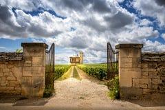 Burgundy, Chateau de La Tour and vineyards, Clos de Vougeot. France. Clos de Vougeot, also known as Clos Vougeot, is a wall-enclosed vineyard, in the Burgundy stock photo