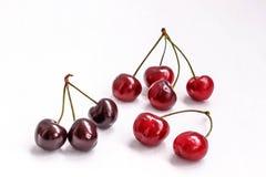 Burgundy cherry on white background Stock Images