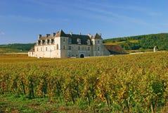 burgundy clos de vougeot Arkivbild
