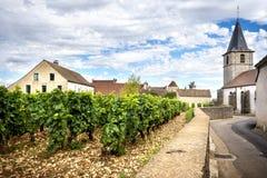 Burgundy, Cote d ` Lub: Vosne-Romanée jest pięknym wioską sławnym dla swój wyśmienicie win i winniców Francja Obrazy Stock