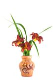burgundy daylily flowers in a clay vase Royalty Free Stock Image