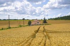 burgundy dom na wsi Obraz Stock