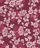 Burgundy floral background Stock Images