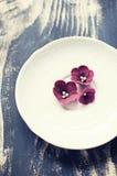 Burgundy fondant kwiaty na biel talerzu Fotografia Stock