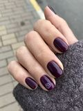 Burgundy gwoździa połysk Manicure na żeńskiej ręce Granatowów gwoździe fotografia stock