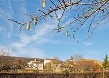burgundy landsby Arkivbilder