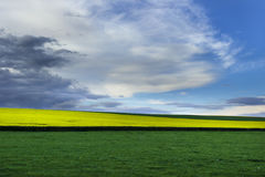 Burgundy landscape Stock Photo