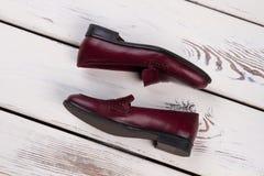 Burgundy loafers με το μαύρο πέλμα Στοκ εικόνες με δικαίωμα ελεύθερης χρήσης