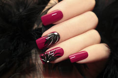Burgundy manicure. Stock Images