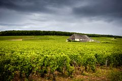 Chateau with vineyards, Burgundy. France royalty free stock photography