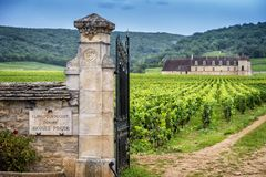Chateau with vineyards, Burgundy, France royalty free stock photo
