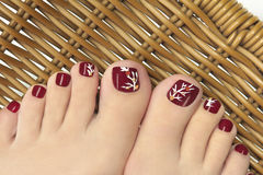 Burgundy pedicure. Burgundy pedicure with a picture of the women's nails on a background Royalty Free Stock Photography