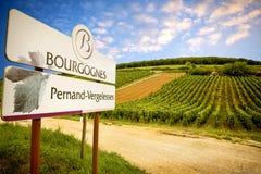 Burgundy, Pernand-Vergelesses wino produkuje w komunie Pernand-Vergelesses w CÃ'te de Beaune Francja obraz stock