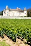 burgundy slott rully Arkivfoton