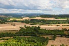 Burgundy Stock Image