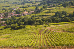 Burgundy village Royalty Free Stock Image