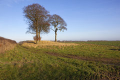 Burial mound in winter Royalty Free Stock Photo