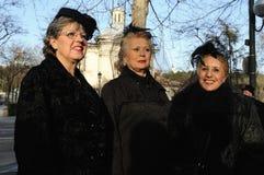 Burial of the Sardine . Madrid Royalty Free Stock Photo