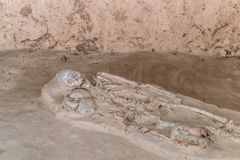 Burial skeleton human bones from ancient grave.  stock photos