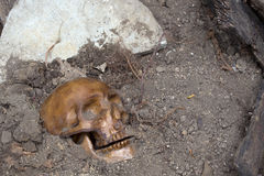 Buried Human Skull Royalty Free Stock Photography