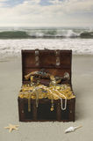 Buried Treasure front Royalty Free Stock Images