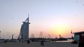 Burj Al Arab during a beautiful golden sunset shot from the Jumeirah beach with lots of seagulls | luxury seven stars hotel