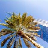 Burj Khalifa behind palm Royalty Free Stock Photos