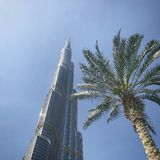 Burj Khalifa Next to palm tree Royalty Free Stock Photo