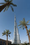 Burj Khalifa and three palm trees, Dubai, UAE Stock Photos