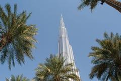Burj Khalifa tower among palm trees Stock Photos