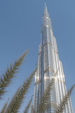 Burj Khalifa wierza za palmowymi liśćmi Obrazy Royalty Free
