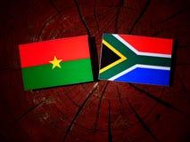 Burkina Faso flaga z południe - afrykanin flaga na drzewnego fiszorka isolat Obraz Royalty Free