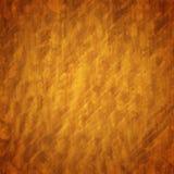 burl drewno Obraz Stock