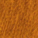 Burl Wood Royalty Free Stock Photos