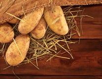 burlap σάκος πατατών συγκομιδ Στοκ εικόνα με δικαίωμα ελεύθερης χρήσης