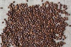 Burlap σύσταση με τα σύνορα φασολιών καφέ Στοκ εικόνες με δικαίωμα ελεύθερης χρήσης