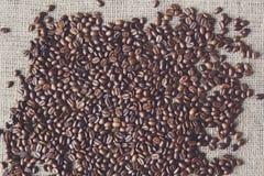 Burlap σύσταση με τα σύνορα φασολιών καφέ Στοκ Εικόνα