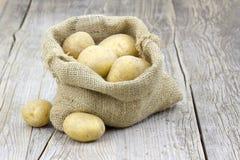 burlap τσαντών πατάτες ακατέργα&si Στοκ Φωτογραφία