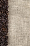 Burlap background with coffee beans. Stock Images